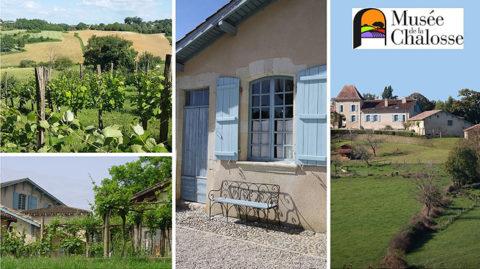 Musée de la Chalosse, 480 Chemin du Sala, 40380 Montfort-en-Chalosse
