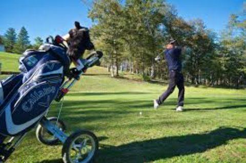 Navarrenx Golf Club, 2 chemin Nitot, 64190 Sus