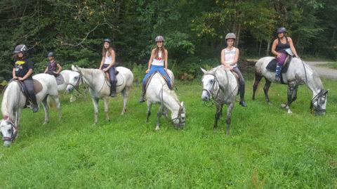 Saubrigues Equitation, 330 Route de Duprat, 40230 Saubrigues